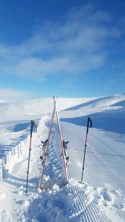 Glenshee Ski School skis and poles in a snow drift Scottish winter sunshine